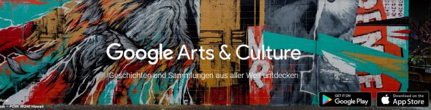 1-Google Arts & Culture - Mozilla Firefox 24.08.2016 194612