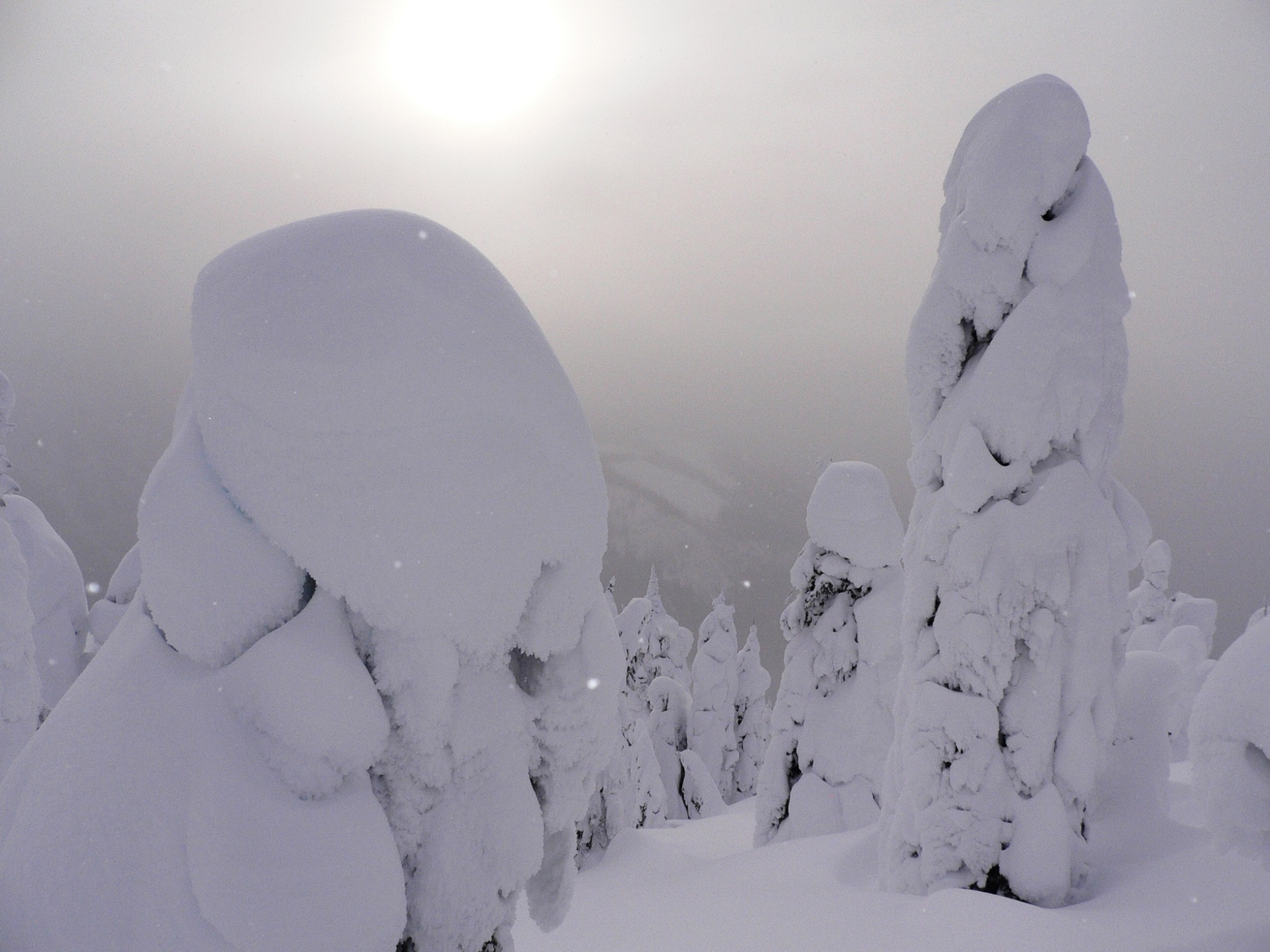 Winter Towers 1